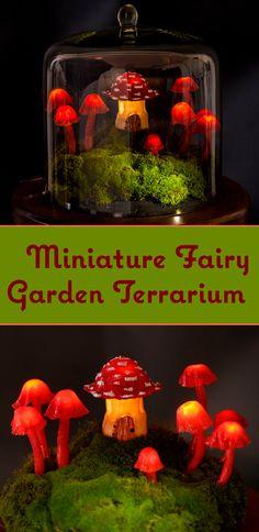 Make a whimsical fairy garden terrarium.