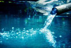 Masaru Emoto: Mensajes del agua y sus propiedades curativas