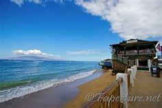 Been here....need to go back!  Cheeseburger in Paradise Maui Hawaii <3