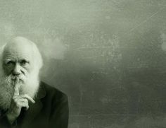 Darwin Day celebrates the anniversary of the birth of the famous evolutionary scientist Charles Darwin.