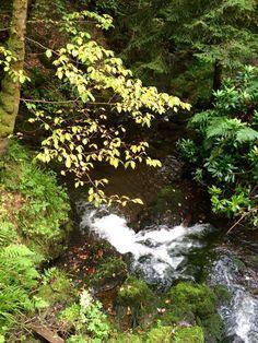 The Fairy Glen, Scotland