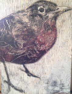 Projects To Try, Bird, Animals, Animales, Animaux, Birds, Animal, Animais, Dieren