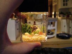 Miniature Maker: Dollhouse Aquarium...
