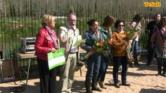 VII fira de la Flor i el Planter Salt 2015
