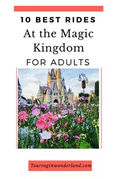 These are the best rides at Magic Kingdom for adults. These attractions will be sure to make you believe in the Magic of Disney World. Disney Vacation Planning, Disney World Planning, Disney World Vacation, Disney Vacations, Walt Disney World Rides, Disney Parks, Marvel Max, Magic Kingdom Rides, Disney Fanatic
