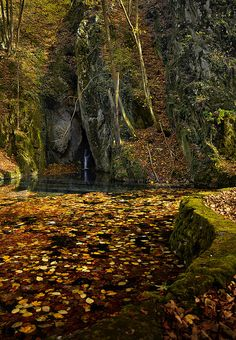 Autumn in Bükk National Park, near Szilvásvárad, Hungary Dream Vacations, Vacation Spots, Beautiful World, Beautiful Places, Amazing Places, Places Around The World, Around The Worlds, Autumn Scenery, The Great Outdoors