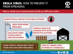 Scared Of Ebola? Learn About It First! by thot4food | Fawesome.tv