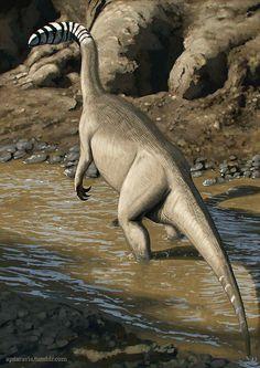 Plateosaurus engehardti