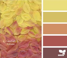 autumn: maybe the colors of a guest room...such warm and inviting colors! so maybe people will come visit me more haha