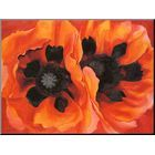 DesignArt 'Stylish Red Watercolor Poppy Flower' Painting Print on Wrapped Canvas   Wayfair Supply