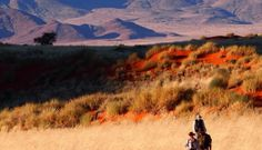 Transformative Travel: Trekking Through Africa's Namib Desert