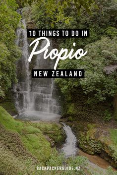 10 Fun Things to Do in Piopio - NZ Pocket Guide New Zealand Travel Guide Stuff To Do, Things To Do, Farm Lifestyle, New Zealand Travel Guide, Forest Scenery, The Hobbit Movies, Picnic Spot, King And Country, Walkabout