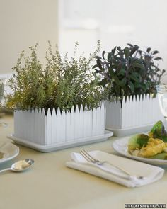 A little herb garden centerpiece. personally I love buying terracotta pots of different sizes and painting them silver, then everyone goes home with a mini!