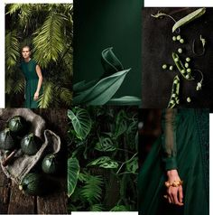 unduetre ilaria - inspiring interiors: MONDAY MOOD BOARD ⎬ GREEN ATTITUDE