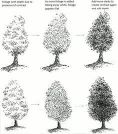 1030 Best How To Draw Nature Flowers Trees And More Images In