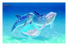 Delfines - Imagenes: Imágenes de delfines fantasia [6-11-15]