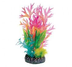 "Underwater Treasures Fink Fern Scene - 8"""