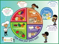My Plate - Five Food Groups Poster My Food Plate, Healthy Food Plate, Healthy Kids, My Plate, Eat Healthy, Healthy Living, Healthy Recipes, Food Groups For Kids, Five Food Groups