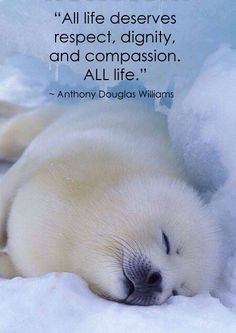 """All life deserves respect, dignity, and compassion. ALL life."" ~ Anthony Douglas Williams"