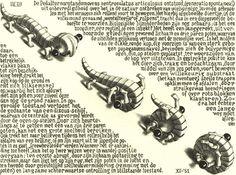 The Mathematical Art Of M.C. Escher | Rockalterno's Blog