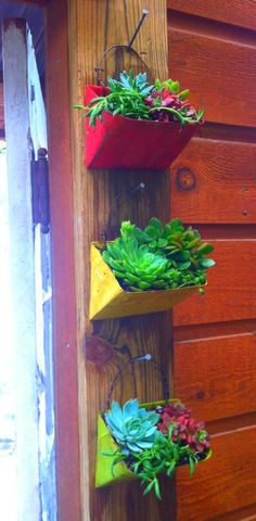 Hang it!  Succulents.  use the baskets I already have.