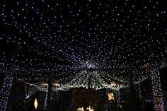 The Starlight Room at Elements Bangalore. Outdoor Wedding venue, Garden Wedding venue. Wedding lighting.