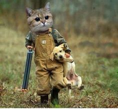 Funny Cat As A Hunter Carrying His Cute Dog - laughspark.com