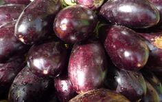 Petite histoire de l'aubergine