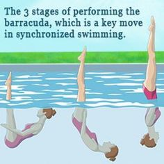 Synchronized swimming is often mocked, and some even doubt it as a 'real' sport―those folks have obviously never tried it. It's a heck of a workout, and requires immense core strength and stamina. Swimming For Beginners, Freestyle Swimming, Mermaid School, Synchronized Swimming, Vintage Swim, Learn To Swim, Keep Swimming, Adult Fun, Swim Team