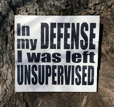 In My Defense I Was Left Unsupervised pallet sign