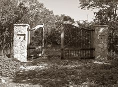 The Gates of Vin Villa, Pelee Island., by Amanda Anger via Flickr. This villa was built in 1868 and sadly succumbed to fire in 1963.