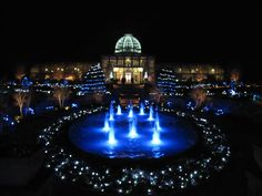 Lewis Ginter Botanical Garden Festival of Lights.