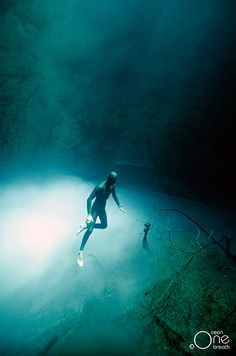 Freediving and Freediving Photography in Cenotes, Mexico