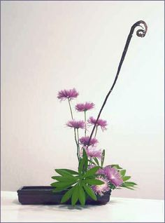 Chrysan­the­mum Ikebana (So simple yet so stunning)