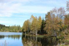 Another lake on my way / Oslomarka