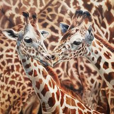 Buy New Blood, Oil painting by Sarah Eden on Artfinder. Discover thousands of other original paintings, prints, sculptures and photography from independent artists. Wildlife Paintings, Wildlife Art, Bird Artwork, British Wildlife, Magic Eyes, Hyperrealism, Realism Art, Learn To Paint, Limited Edition Prints
