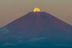 Harvest Moon over Mount Fuji - Shinichiro Saka