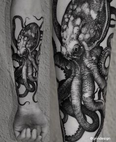 Robert Borbas Tattoo - Octopus