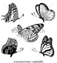 Wektor - komplet, czarnoskóry, biały, motyle, TA - zbiory ilustracji, ilustracje royalty free, zbiory ikon klipart, zbiór ikon klipart, logo, sztuka, obrazy EPS, obrazki, grafika, grafik, rysunki, rysunek, obrazy wektorowe, projekt graficzny, EPS wektor graficzny