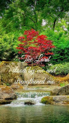 Floral Psalm 37:4