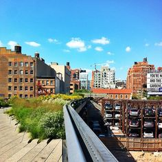 BEEN High Line in New York, NY Old Rail Track Park - Definitely wort checking out! Huge park/walking path through the city.