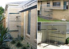 just one examples of a catio -- an outdoor space that your indoor cats can access...this webpage has a bunch more...definitely want for my future house/cats!