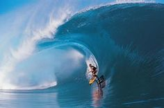 TripBucket - We want You to DREAM BIG! | Dream: Surf Fuerteventura Island, Canary Islands, Spain