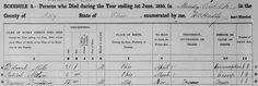 Bring Out Your Dead: A Look at Mortality Schedules #gentipjar #genealogy #census