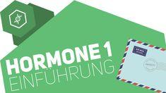 Hormone - Einführung