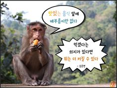 원숭이해_현실적인명언10가지06