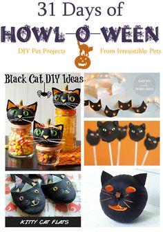 31 Days of Howloween - Black Cat DIY Ideas