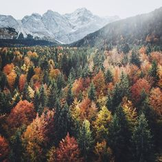 German fall in all its glory. Photo by Hannes Becker. Landscape Photography, Nature Photography, Travel Photography, Beautiful World, Beautiful Places, Misty Forest, Autumn Aesthetic, Jolie Photo, Photo Instagram