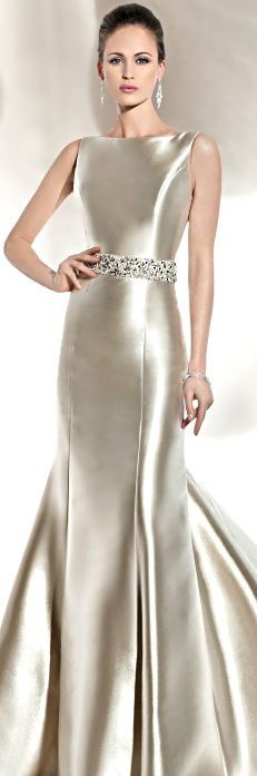 Elegant Silvery Gown