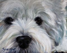 SPARROW Westie West Highland Terrier gift for Dog lover portrait pet painting